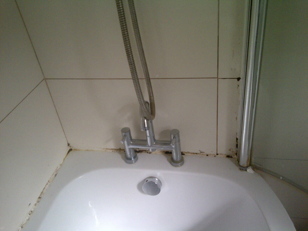 cleaner for bathroom tiles work history kent tiledoctor 17764